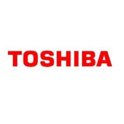 Bornova Toshiba Servisi
